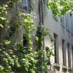 L'Hôtel de Loulle en photos