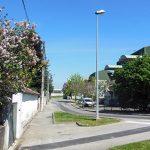La rue Louis Vinay